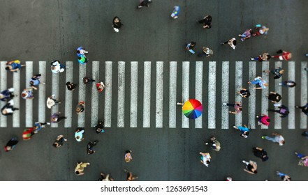 Aerial. Pedestrian crossing crosswalk. Top view. In the center is a man with a colorful umbrella. Colorful accent on a crosswalk.