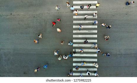 Aerial. Pedestrian crossing. Crosswalk top view.