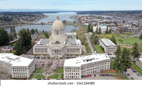 Aerial Perspective Over Spring Cherry Blossoms at the Washington State Capital building in Olympia