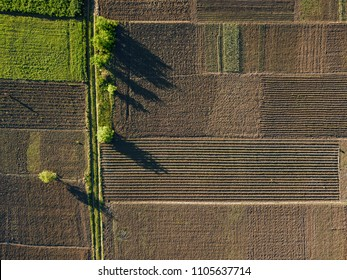 aerial photo of agro, summer view of green land with fields and gardens.