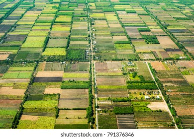 aerial photo of agro, summer view of green land with fields and gardens