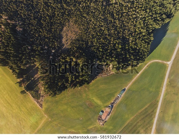 Aerial photo from a drone, top view of field roads and trees