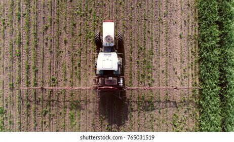 Aerial photo looking down on tractor spraying chemicals over young corn field mostly glyphosate is used as pre-harvest herbicide and harvest aid on crops and is used to kill weeds