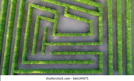 Aerial photo low altitude above bush maze showing different paths just one leading to exit also known as labyrinth is path or collection of paths typically from entrance to goal drone top-down view
