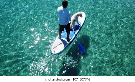 Aerial photo of man sup paddling with his cute dog in caribbean tropical beach with turquoise waters