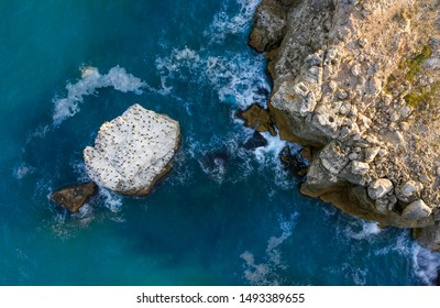 Aerial photo of a rocky seashore with vivid blue sea and a rock with landing birds