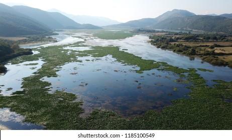 Aerial photo of tropical swamp in vegetated wetland
