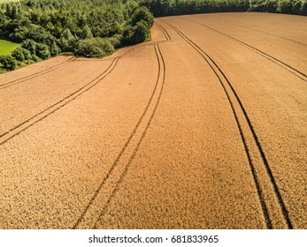 Aerial photo from wheat field