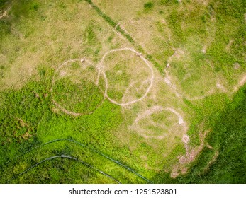 Aerial photography bird-eye view of grass nature landscape