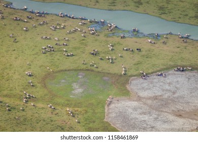 Aerial photography of Dutch landscape and nature reserve The Oostvaardersplassen