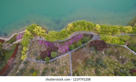 Aerial photography at Spring Lake Shore multicolored flower landscape