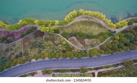 Aerial photography at Spring Lake Shore multicolored flower landscape and road