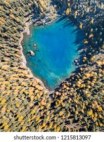 Aerial photograpy over the heart-shape Saoseo Lake in fall season with pine and larch trees in the morning, Switzerland