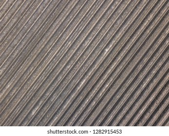 Aerial of ploughed and sown potatoe field in agricultural landscape in the Netherlands