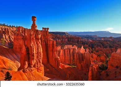 Aerial scenic view of stunning red, orange and yellow sandstone hoodoos in Bryce Canyon National Park in Utah, USA