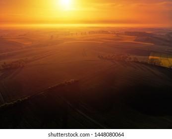 Aerial scenic view of sunrise ofer green grain field