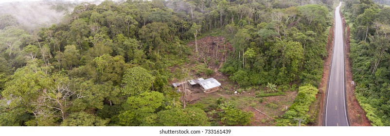 Aerial shot of an Amazonian highway in Ecuador and a clearing made by a subsistence farmer. Roads bring colonization and destruction of the rainforest to the Amazon Basin.