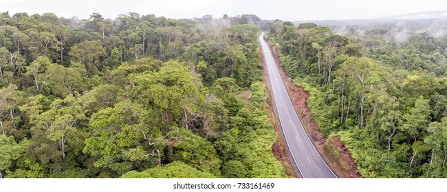 Aerial shot of an Amazonian highway in Ecuador Roads bring colonization and destruction of the rainforest to the Amazon Basin.