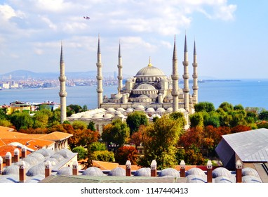 Aerial shot of Blue Mosque (Sultan Ahmed Mosque) surrounded by trees in Istanbul's Old City, with Sightseeing Seaplane (Propeller Aircraft) Above - Sultanahmet, Istanbul, Turkey [Autumn/ Fall Colors]