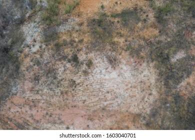 Aerial shot desert weed top view