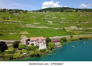 Aerial shot of Lavaux vineyards near Saint Saphoring village featuring Chateau de Glerolles, Switzerland