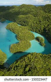 "Aerial shot of the ""Milky Way"" lagoon in Palau"