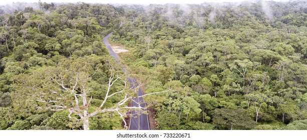 Aerial of shot of a road running through the rainforest in Ecuador. Roads bring colonization and destruction of the rainforest to the Amazon Basin.