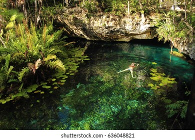 Aerial shot of a woman swimming in a tropical cenote in Mexico. Underground swim caves with green lily pads and ferns.