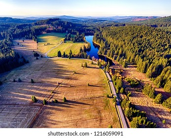 The aerial spruce forest in falls morning