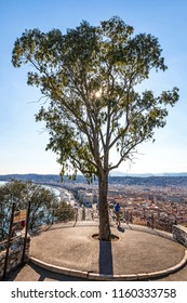 Aerial summer panorama of City of Nice, France. Luxury resort of French riviera. View from Castle Hill Park (Parc de la Colline du Chateau). Backlit view