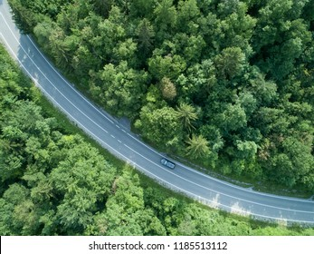 AERIAL, TOP DOWN: Dark car drives through a long curve of an asphalt road running through a tranquil forest. Tourists on a fun road trip drive along the country path in rural part of green Slovenia.