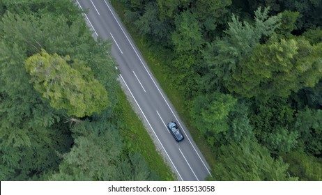 AERIAL, TOP DOWN: Flying above a car cruising through the beautiful dark green forest. Cinematic shot of dark colored car on a scenic journey down empty asphalt road running through the countryside.