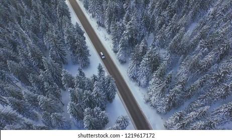 AERIAL TOP DOWN: Flying above tourist car driving through the scenic snowy forest. Unknown people in a silver car on a fun road trip in the idyllic wintry countryside. Countless snow covered conifers.