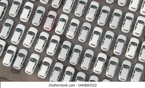 AERIAL, TOP DOWN: Flying over cars wrapped in white paper parked in a car dealership parking lot. Countless brand new cars in large parking lot waiting to get exported to their destination country.