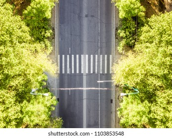 aerial top down view of crosswalk in the urban city