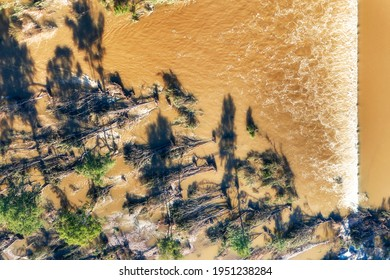 Aerial top down view over Nepean river Penrith Weir across flooded stream of yellow water with fallen trees.