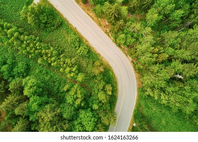 Aerial top down view of a small road through the forest in Southern Finland