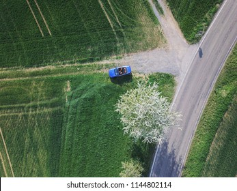 Aerial top view of blue cabrio parked by blooming tree