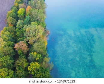 Aerial top view of colourful autumn  trees by blue lake