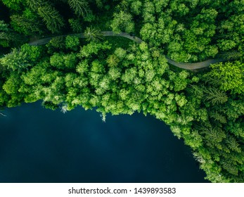 Aerial top view of country road in green summer forest and blue lake. Rural landscape in Finland. Drone photography from above.