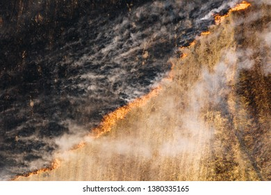 Aerial top view of fire in the field with burning dry grass, burnt land and heavy smoke