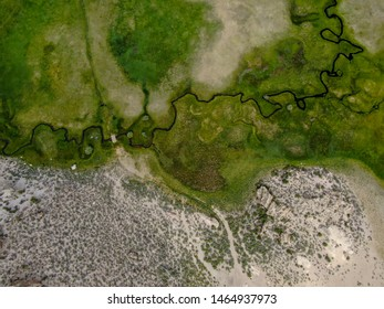 Aerial top view of green land and small curve river in Aspen Springs, Mono County California, USA
