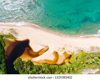 Aerial top view of river merging to tropical white sand beach and turquoise clear sea water with small waves and palm trees background. Praia do Forte, Bahia, Brazil. Travel tropical concept
