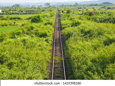 Aerial top view of the rusty rails crossing the green field in a summer day. Aerial view of railway track through countryside, drone top view pov of rails as abstract background