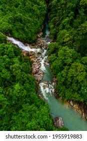 Luftbild des tropischen Waldes - schöne ruhige Landschaft im Dschungel - Baumblick von oben - gesunde Umwelt und Ökosystemkonzept des Regenwaldes