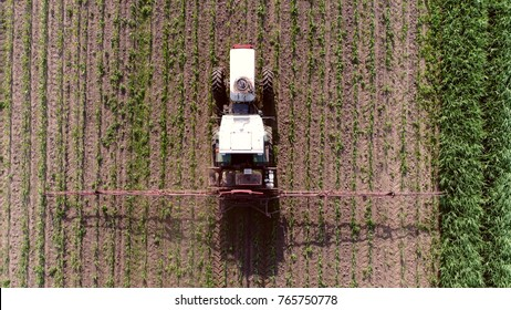 Aerial top-down photo of tractor spraying chemicals over young corn field mostly glyphosate is used as pre-harvest herbicide and harvest aid on crops and is used to kill weeds