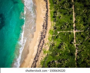 Aerial tropical landscape caribbean view