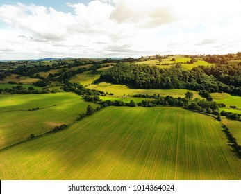 Aerial vast green field view - Agriculture field aerial photo - Green landscapes drone photo