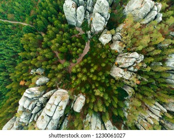 aerial veiw of green alpine forest. drone shot. rock city in Adrspach Rocks region of Czech Republic