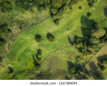 aerial veiw of rural road, green field and trees. drone shot